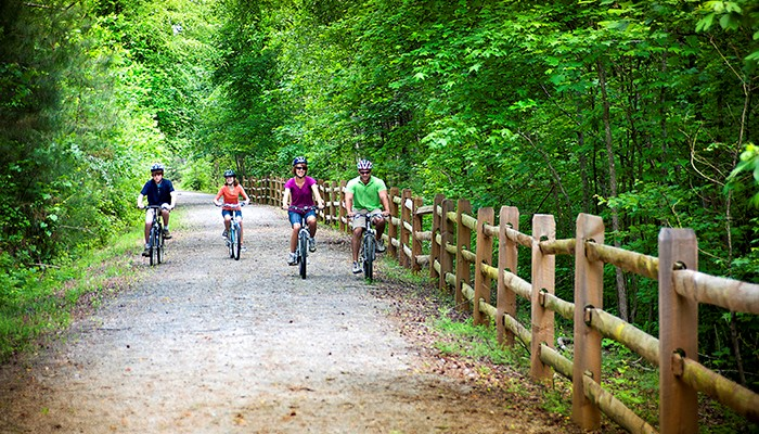 Wide shot of a four-member family riding their bikes on a forest trail